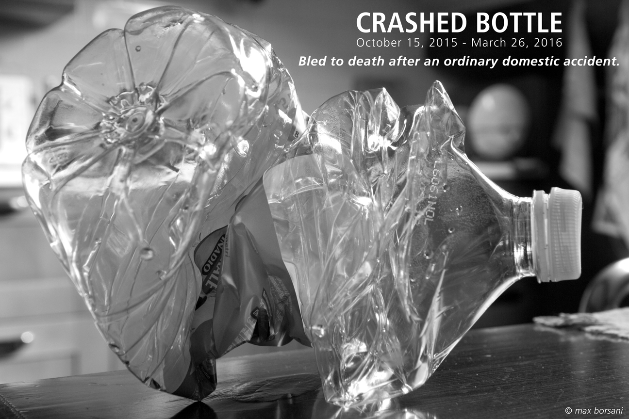 CRASHED BOTTLE