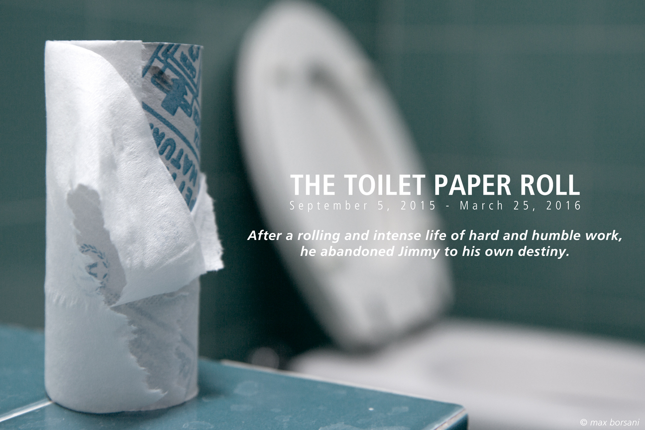 TOILET PAPAER ROLL
